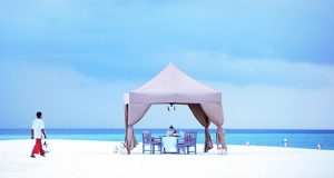 best canopy tent